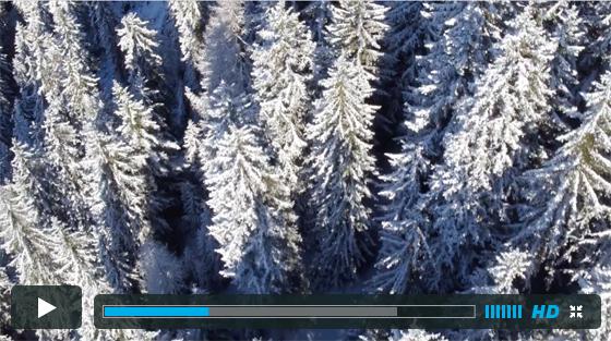 Alpine Estate For Bramble Ski